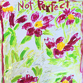 Not Perfect de Dan Bern