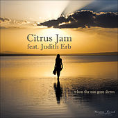 When the Sun Goes Down von Citrus Jam