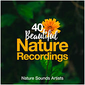 40 Beautiful Nature Recordings de Nature Sounds Artists