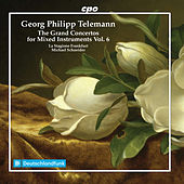 The Grand Concertos for Mixed Instruments, Vol. 6 von Various Artists
