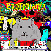 Erotomania - Quintron at the Chamberlin by Quintron