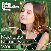 Meditation: Nature Sound World de Relax Meditation Sleep