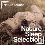Nature Sleep Selection by Nature Sounds (1)