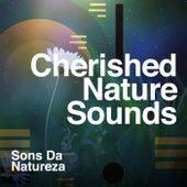Cherished Nature Sounds de Sons da Natureza