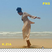 Pns by K.Zia
