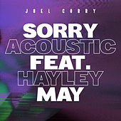 Sorry (Acoustic) [feat. Hayley May] by Joel Corry