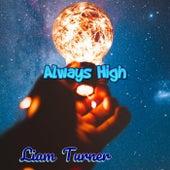 Always High de Liam Turner