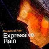 Expressive Rain by Sounds of Rain