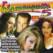 Flamenquito 5 by Various Artists