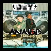 Analog de The DEY