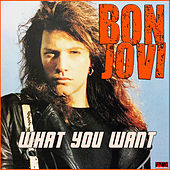 What You Want von Bon Jovi