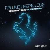 Falling Deep In Love de Horse Meat Disco