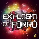 Explosão do Forró von Various Artists