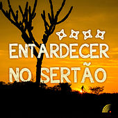 Entardecer No Sertão von Various Artists