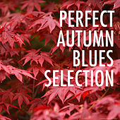 Perfect Autumn Blues Selection by Various Artists