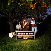 Best Intentions by Sound Of Rum