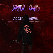 Access Denied by Sinful Owls
