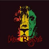 Mr. Right (feat.4her) de D.J. Ray