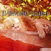 43 Respledent Lullabyes von Best Relaxing SPA Music