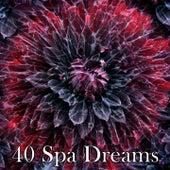 40 Spa Dreams by Deep Sleep Music Academy