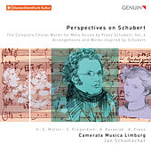 Perspectives on Schubert: The Complete Choral Works for Male Voices by Franz Schubert, Vol. 6 de Various Artists