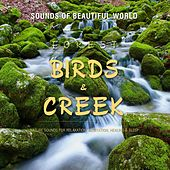 Forest: Birds & Creek (Nature Sounds for Relaxation, Meditation, Healing & Sleep) by Sounds of Beautiful World