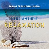 Deep Ambient: Relaxation by Sounds of Beautiful World