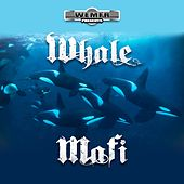Whale Mafi by Rich The Factor