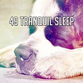 49 Tranquil Sleep by Ocean Sounds Collection (1)