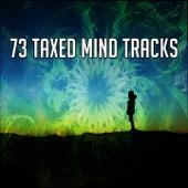 73 Taxed Mind Tracks von Entspannungsmusik