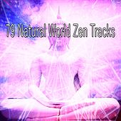 79 Natural World Zen Tracks von Lullabies for Deep Meditation