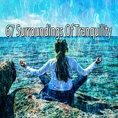 67 Surroundings of Tranquility de Nature Sounds Artists