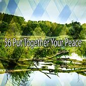 56 Put Together Your Peace by Classical Study Music (1)