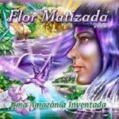 Uma Amazônia Inventada de Ciranda Flor Matizada
