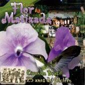 Ciranda Brasil 25 Anos de Folclore de Ciranda Flor Matizada