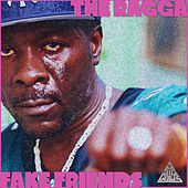 Fake Friends by Ragga