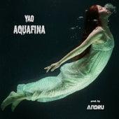 Aquafina de Yao