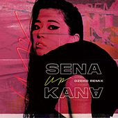 Up (feat. Wiz Khalifa, Sheppard) [Dzeko Remix] by Sena Kana