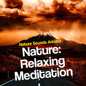 Nature: Relaxing Meditation de Nature Sounds Artists