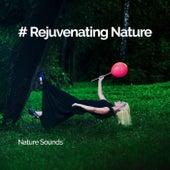 # Rejuvenating Nature by Nature Sounds (1)