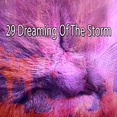 29 Dreaming of the Storm by Rain Sounds and White Noise