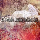 63 Tracks for Dreaming and Rem Sleep de Sounds Of Nature
