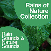 Rains of Nature Collection by Rain Sounds