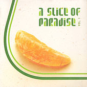 A Slice of Paradise Vol. 1 / Part 3 de Various Artists