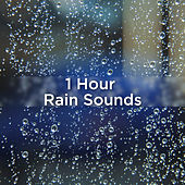 1 Hour Rain Sounds by Rain Sounds
