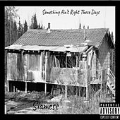 Something Ain't Right These Days by Siamese