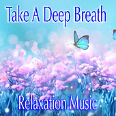 Take A Deep Breath Relaxation Music by Various Artists