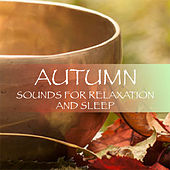 Autumn Sounds For Relaxation & Sleep by Various Artists