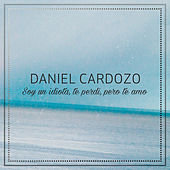 Soy un Idiota, Te Perdi, Pero Te Amo de Daniel Cardozo