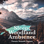 Sleep: Woodland Ambience de Nature Sounds Artists
